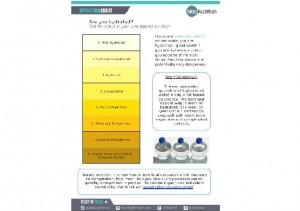 Hydration Chart2